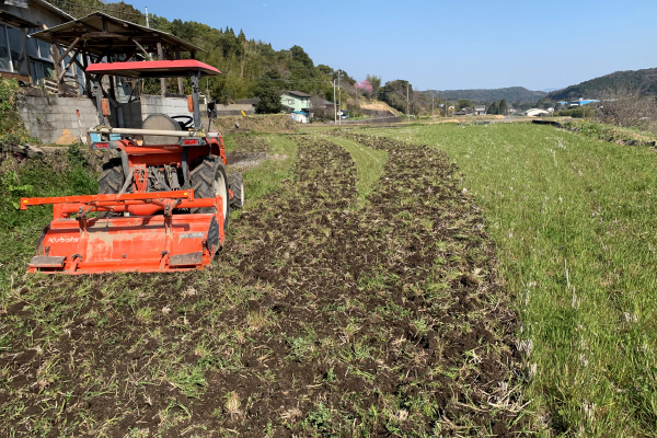 【February】Rice field management