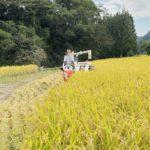 【2020年10月】稲刈り